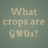 What Crops are Genetically Modified?